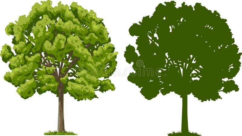 Árvore e silhueta ilustração do vetor