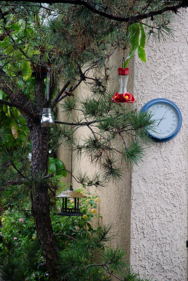 Árvore em alimentadores do pássaro da chuva fotografia de stock royalty free