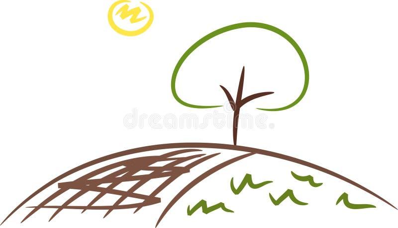 Árvore em um campo