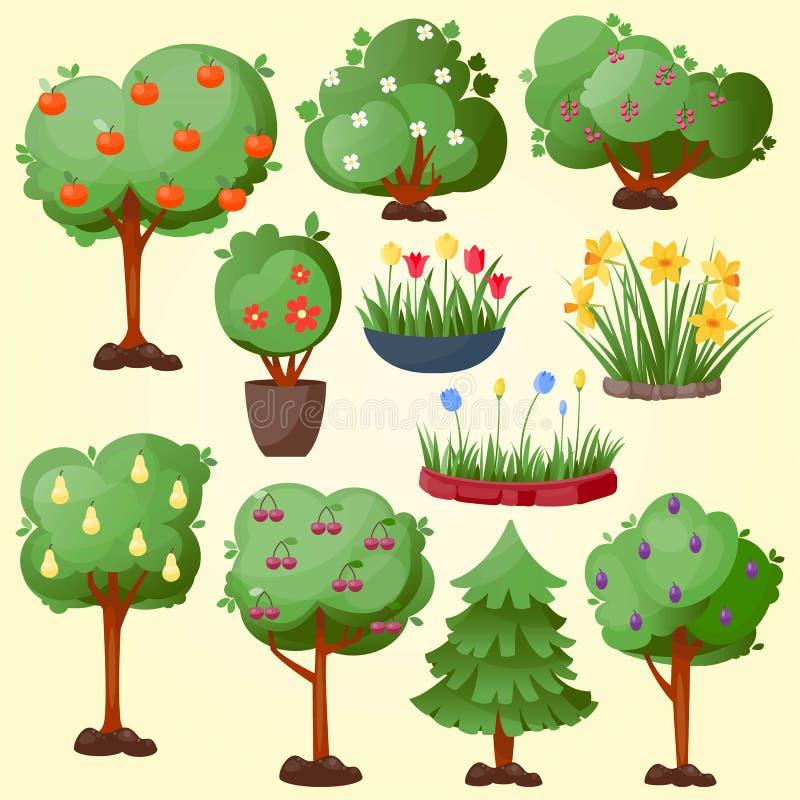 A árvore engraçada do parque do jardim do verde dos desenhos animados com frutos ajustou a ilustração gráfica de madeira dos elem ilustração stock