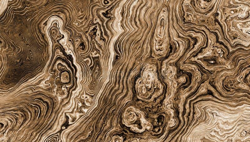 A árvore enraíza o fundo encaracolado ilustração do vetor