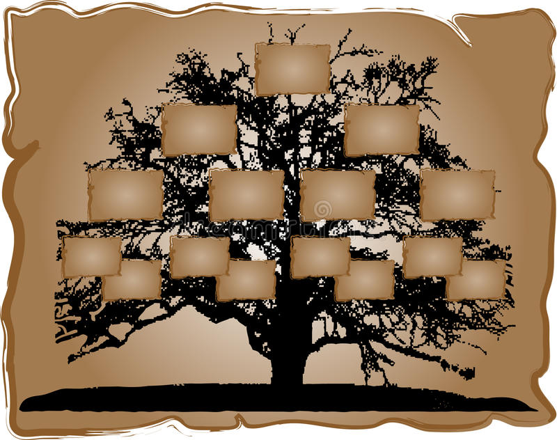 Árvore genealógica ilustração stock