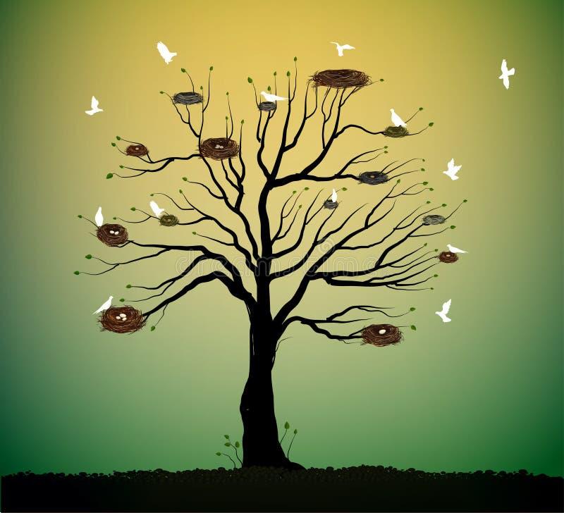 Árvore grande com muitos ninhos e rebanho dos pássaros brancos que voam, retorno à ideia da casa da natureza, assentamento da mol ilustração do vetor