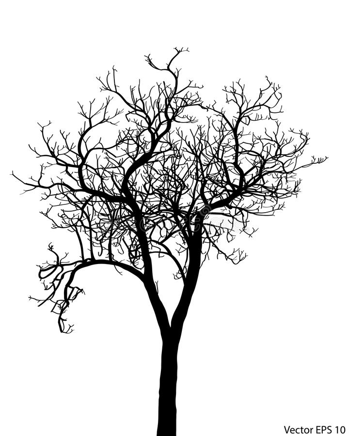 Árvore inoperante sem ilustração do vetor das folhas esboçada ilustração stock