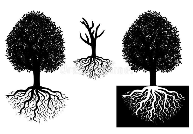 Árvore isolada com raizes ilustração stock