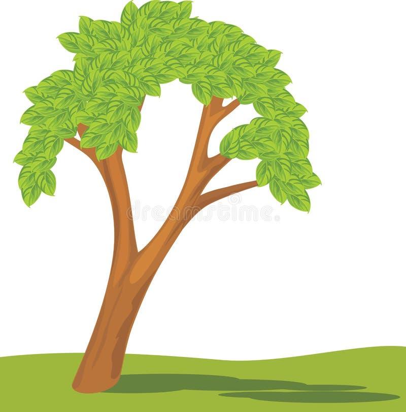 Árvore isolada em um branco ilustração stock