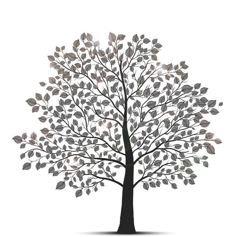Árvore isolada no branco ilustração royalty free