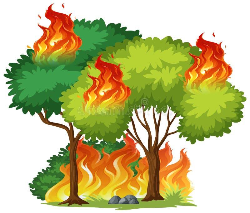 Árvore isolada no fogo ilustração do vetor