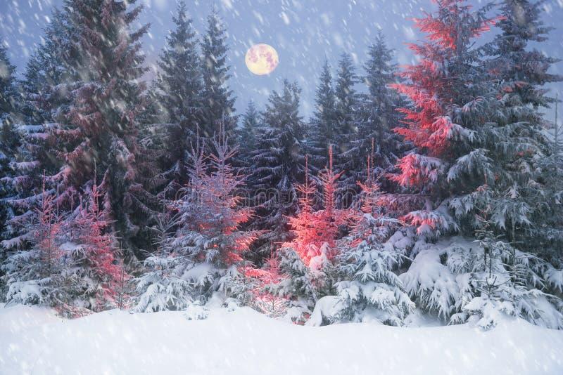 Árvore mágica no Natal imagens de stock
