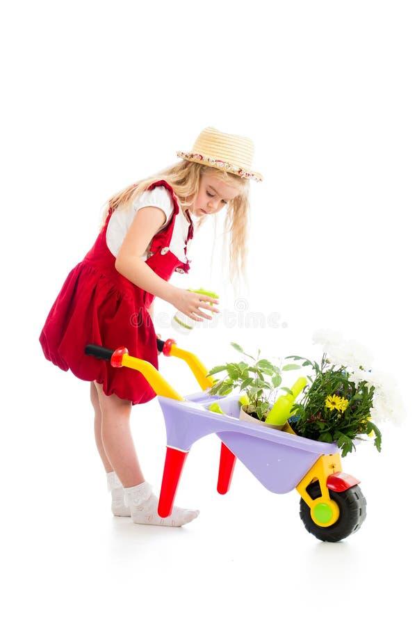 Árvore molhando da criança do jardineiro imagem de stock royalty free