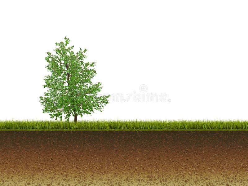 Árvore na grama ilustração stock