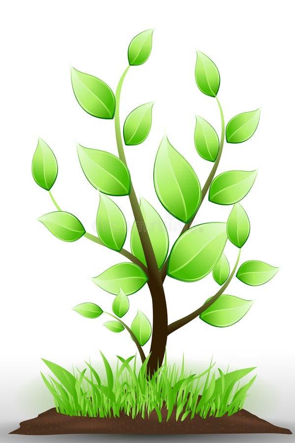 Árvore natural ilustração royalty free