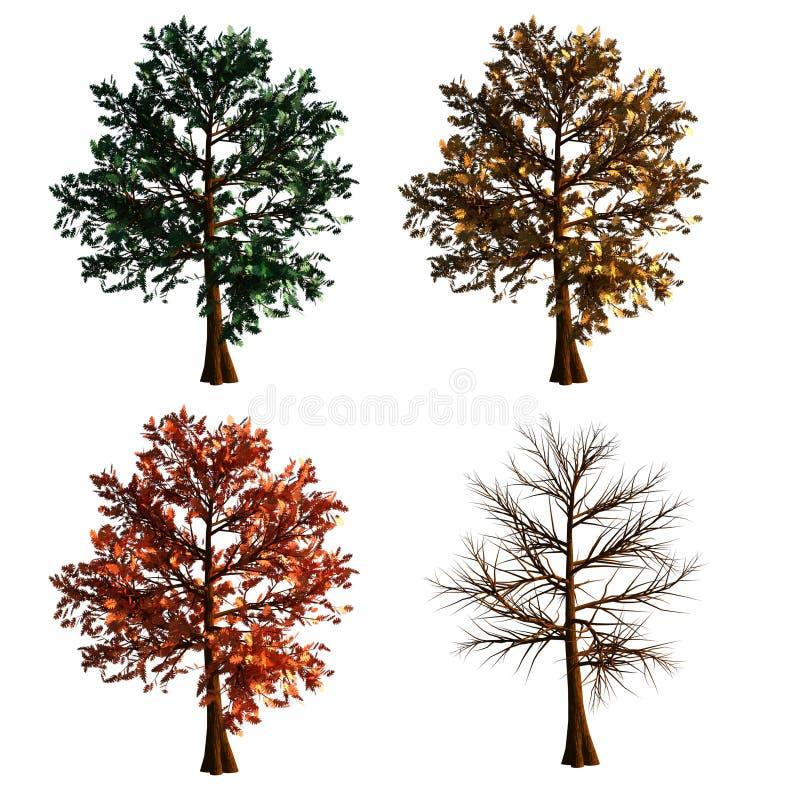 Árvore no isolado de 4 cores no fundo branco ilustração do vetor
