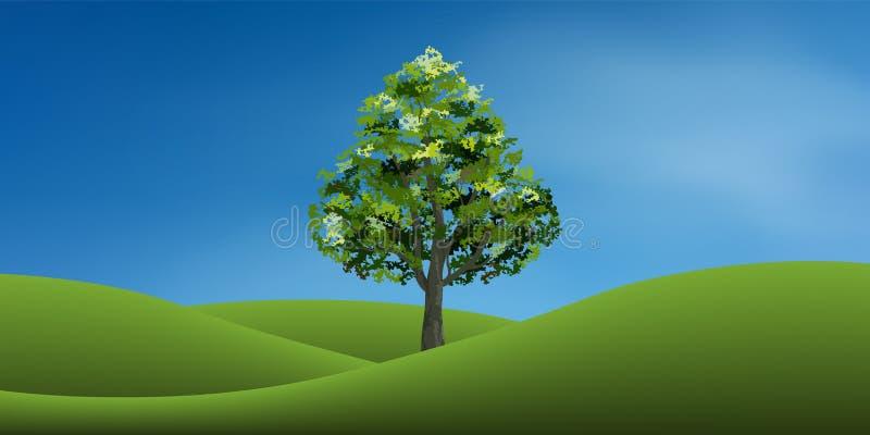 Árvore no monte da grama verde com céu azul Parque do fundo e exterior abstratos ilustração stock