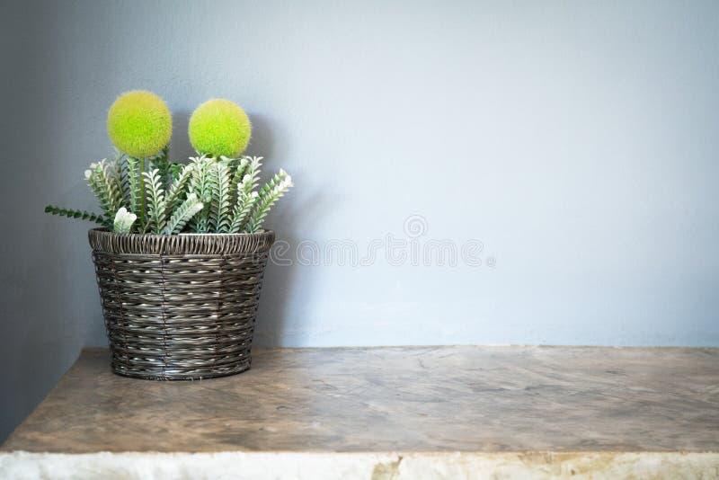Árvore pequena artificial em um potenciômetro de flor luxuoso com a parede cinzenta do cimento, espaço da cópia fotos de stock royalty free