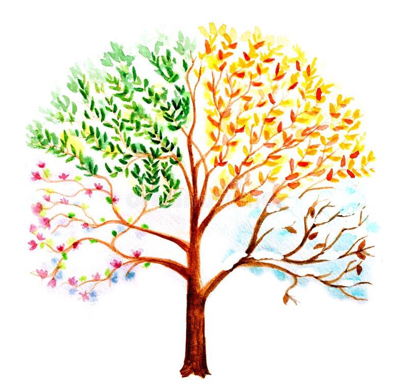 Árvore pintada mão ilustração stock