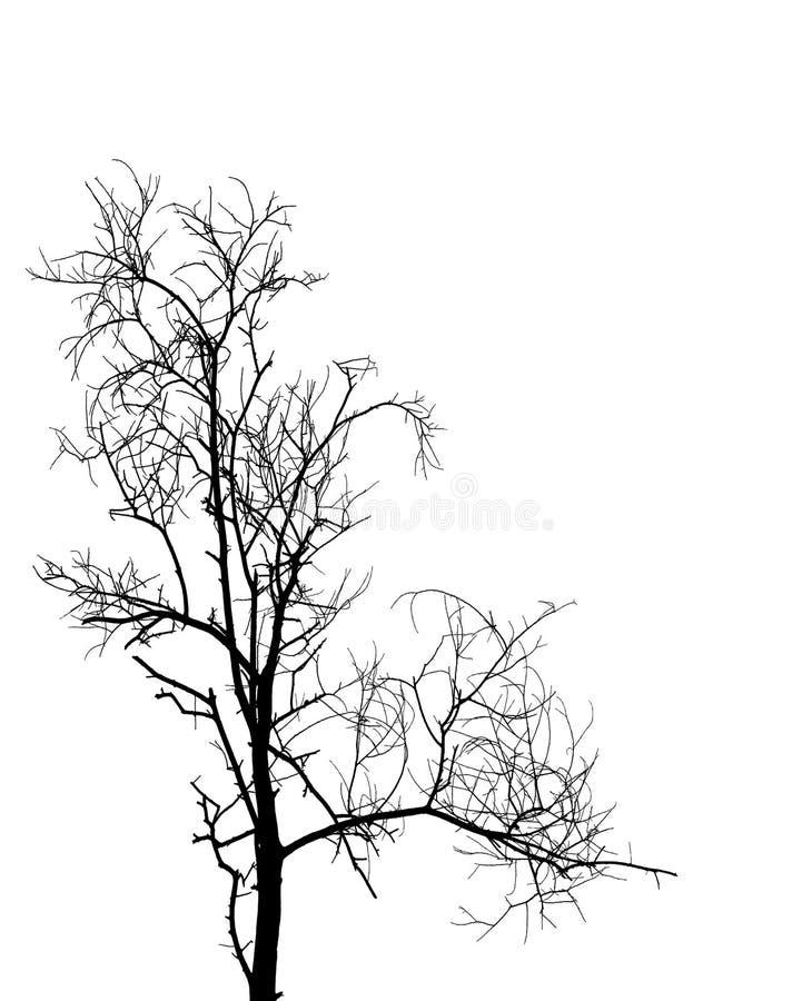 Árvore preta ilustração stock