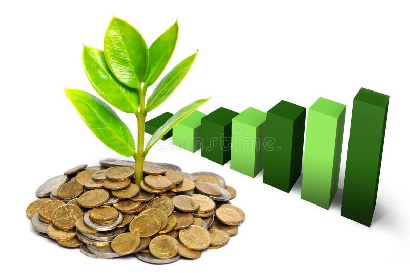 Árvore que cresce em moedas imagens de stock royalty free
