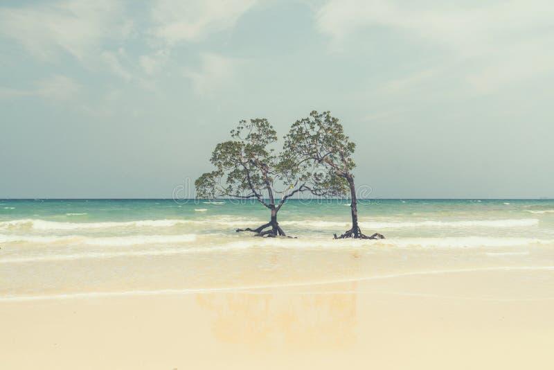 árvore só dos manguezais no estilo retro da argila imagens de stock royalty free