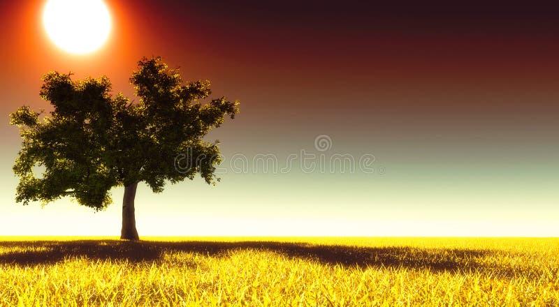 Árvore só no prado fotografia de stock royalty free