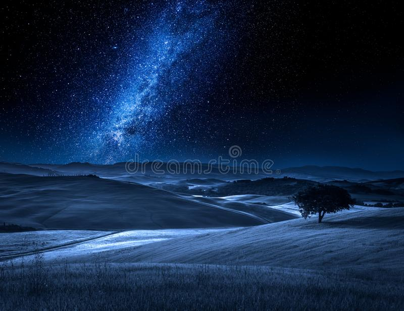 Árvore sozinha no campo na noite com Via Látea fotos de stock