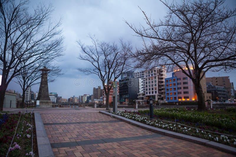 Árvore velha no parque na cidade de Fukuoka imagens de stock
