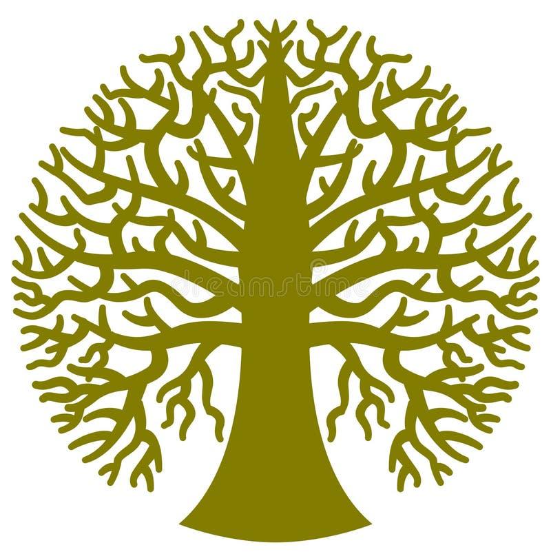 Árvore verde na forma circular
