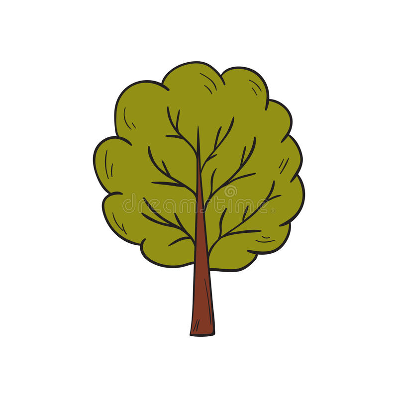 Árvore verde tirada mão do outono dos desenhos animados do vetor ilustração royalty free