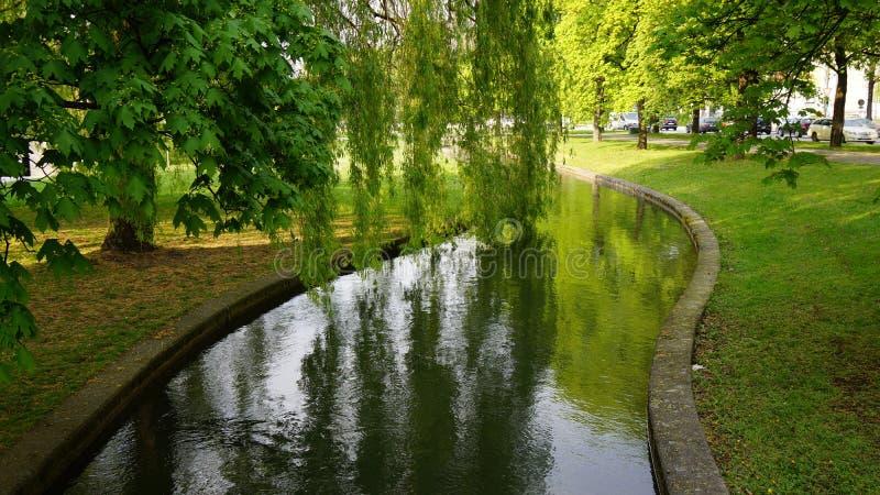 árvore vermelha do bavaria inglês de munich do espelho do rio do jardim imagens de stock royalty free