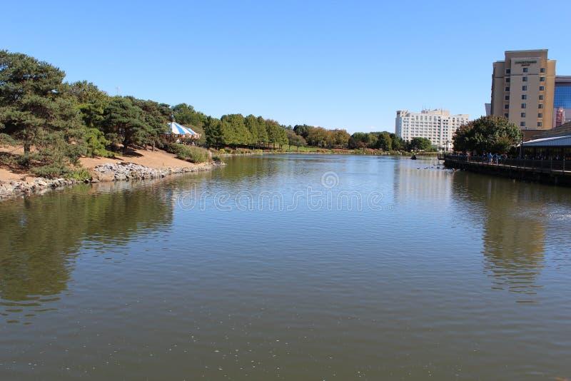 Árvores, água, campo de jogos em RIO Washington Center fotos de stock