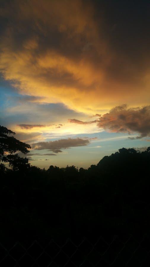 Árvores bonitas do por do sol do céu fotografia de stock