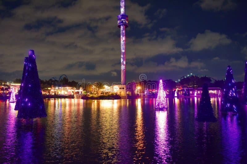 Árvores bonitas envolvidas firmemente em luzes do diodo emissor de luz para os feriados do Natal que refletem na torre do lago e  imagens de stock royalty free