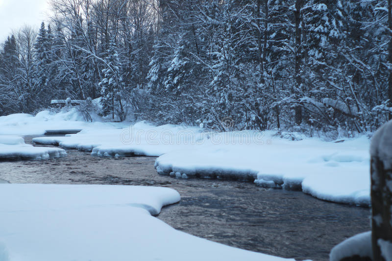 Árvores cobertas brancas do rio do gelo da neve da angra do inverno fotografia de stock