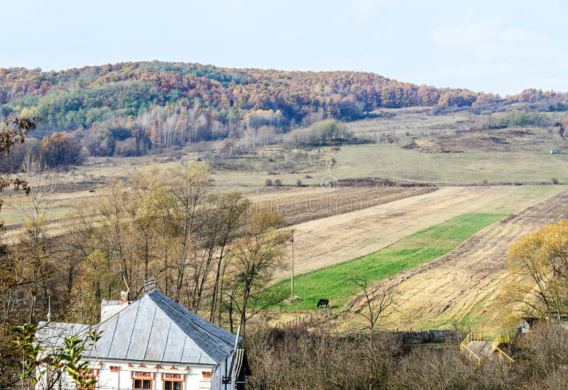 Árvores coloridas no tempo do outono, região de Horezu imagens de stock royalty free
