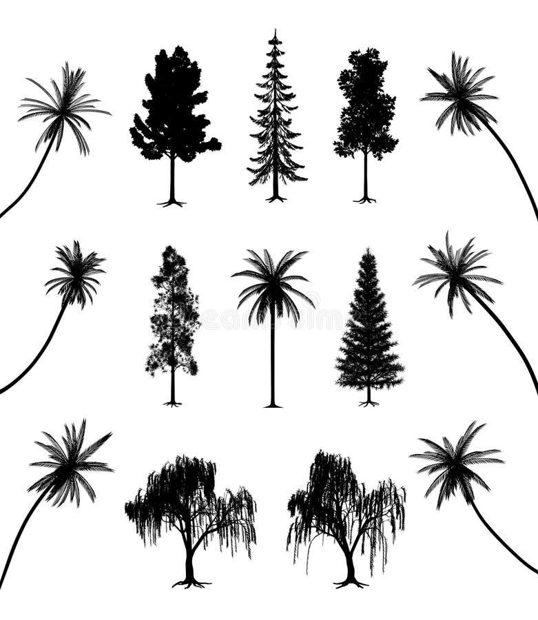 Árvores com raizes e palmas ilustração royalty free