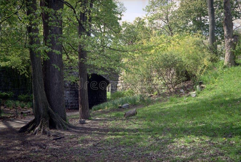 Árvores da mola e passagem subterrânea, parque de Olmsted foto de stock