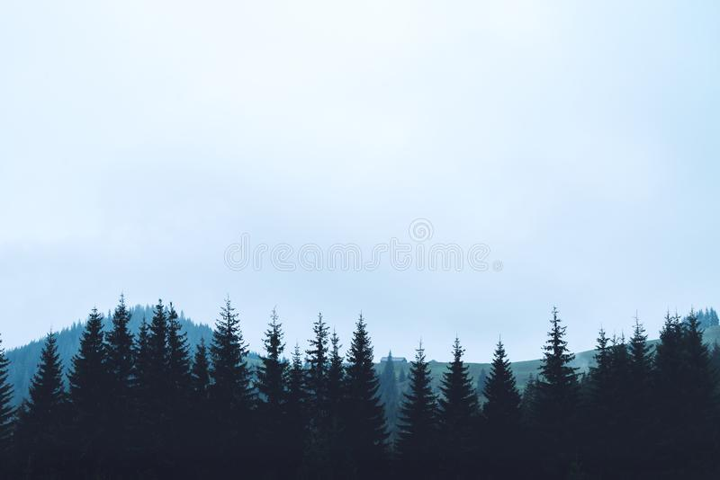 Árvores da silhueta das montanhas fotografia de stock