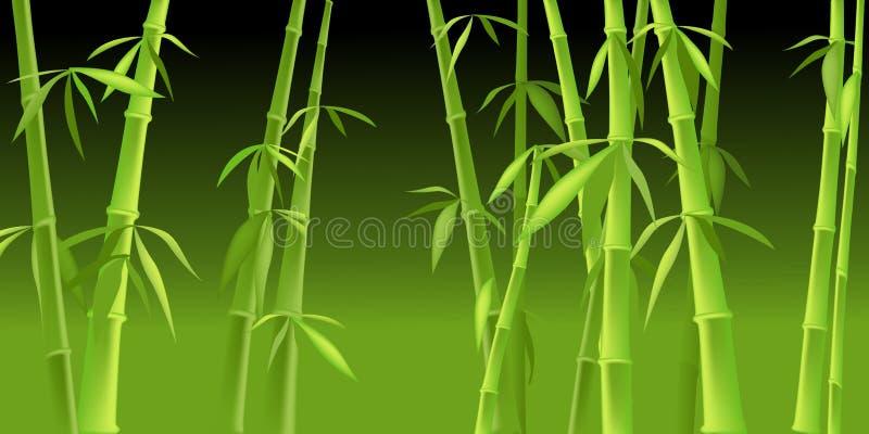 Árvores de bambu chinesas ilustração do vetor