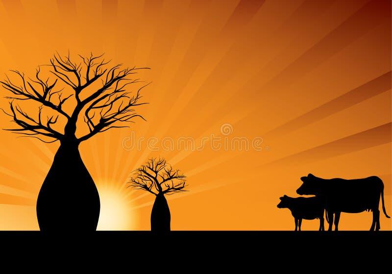 Árvores de Boab e duas vacas ilustração do vetor