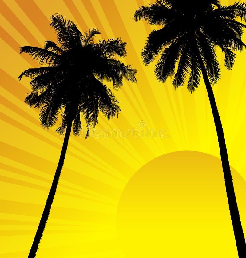 Árvores de coco ilustração stock