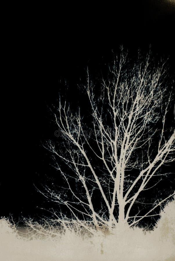 árvores de Darkside do Grunge-lixo imagens de stock royalty free