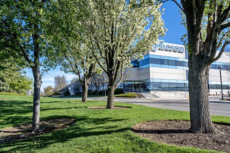 Árvores de florescência da construção da tecnologia do mícron na mola fotos de stock royalty free
