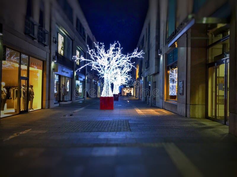 Árvores de Natal brilhantes foto de stock