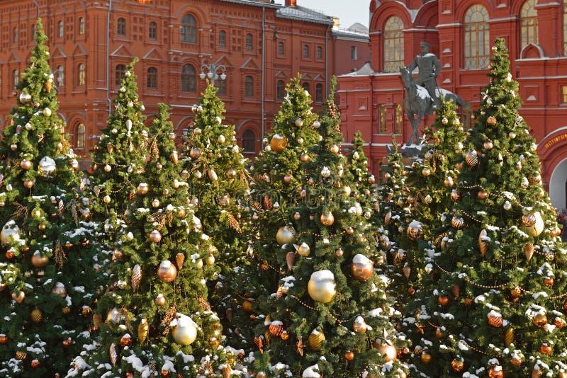 Árvores de Natal cobertos de neve no quadrado de Manege em Moscou fotografia de stock royalty free