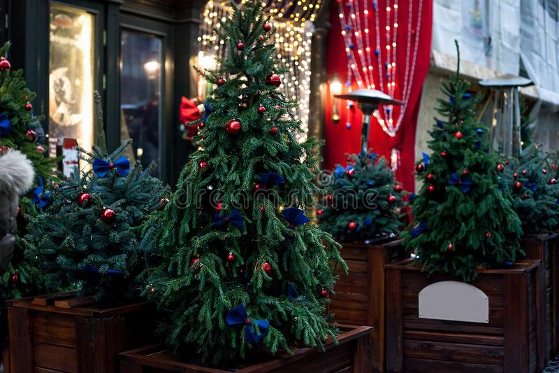 Árvores de Natal decoradas em uns potenciômetros perto da casa na rua da noite fotos de stock