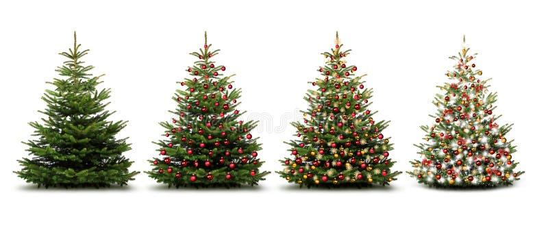 Árvores de Natal isoladas ilustração do vetor