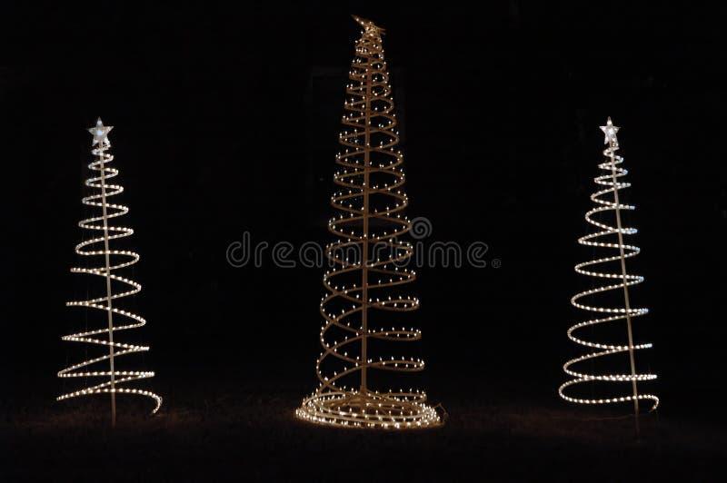 Árvores de Natal nas luzes fotos de stock royalty free