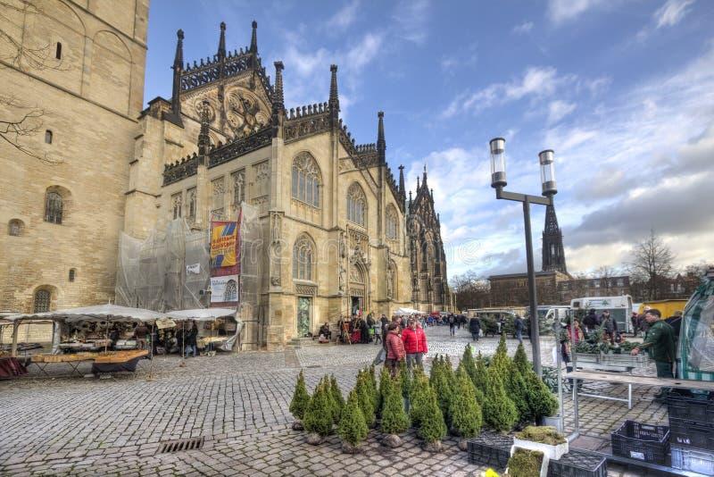 Árvores de Natal para a venda em Munster, Alemanha imagens de stock