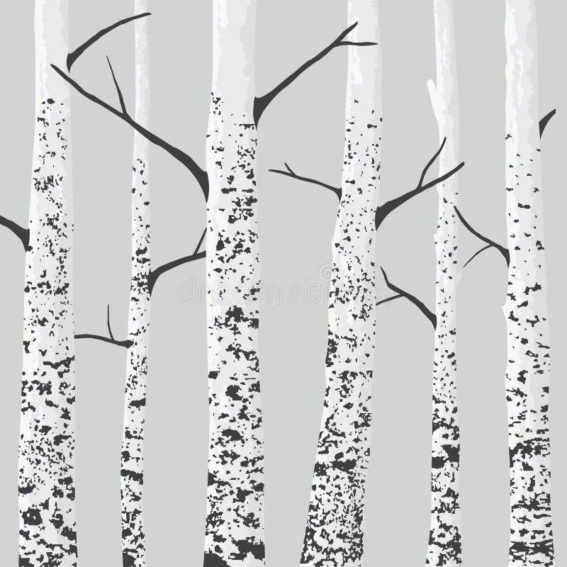 Árvores de vidoeiro ilustração do vetor