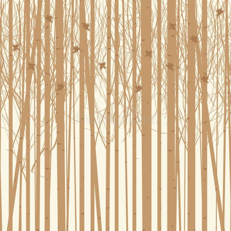 Árvores de vidoeiro do fundo do vetor com pássaros ilustração stock